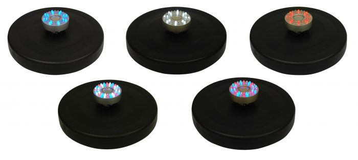 Apollo Fountain with Colour Changing LED Lights by Ambienté™