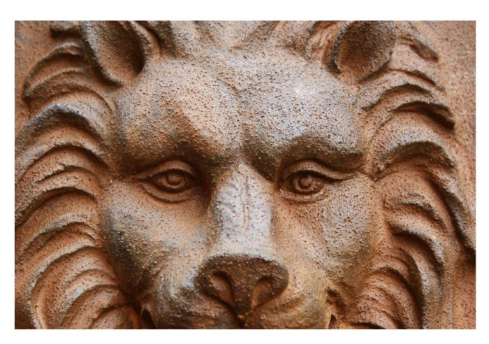 Gentle Lion Head Wall Fountain Water Feature by Ambienté™