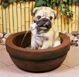 Winston Pug in the Bath Water Feature - H43cm